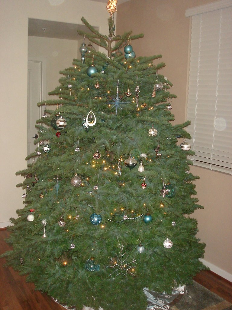 2008 - Our First Tree