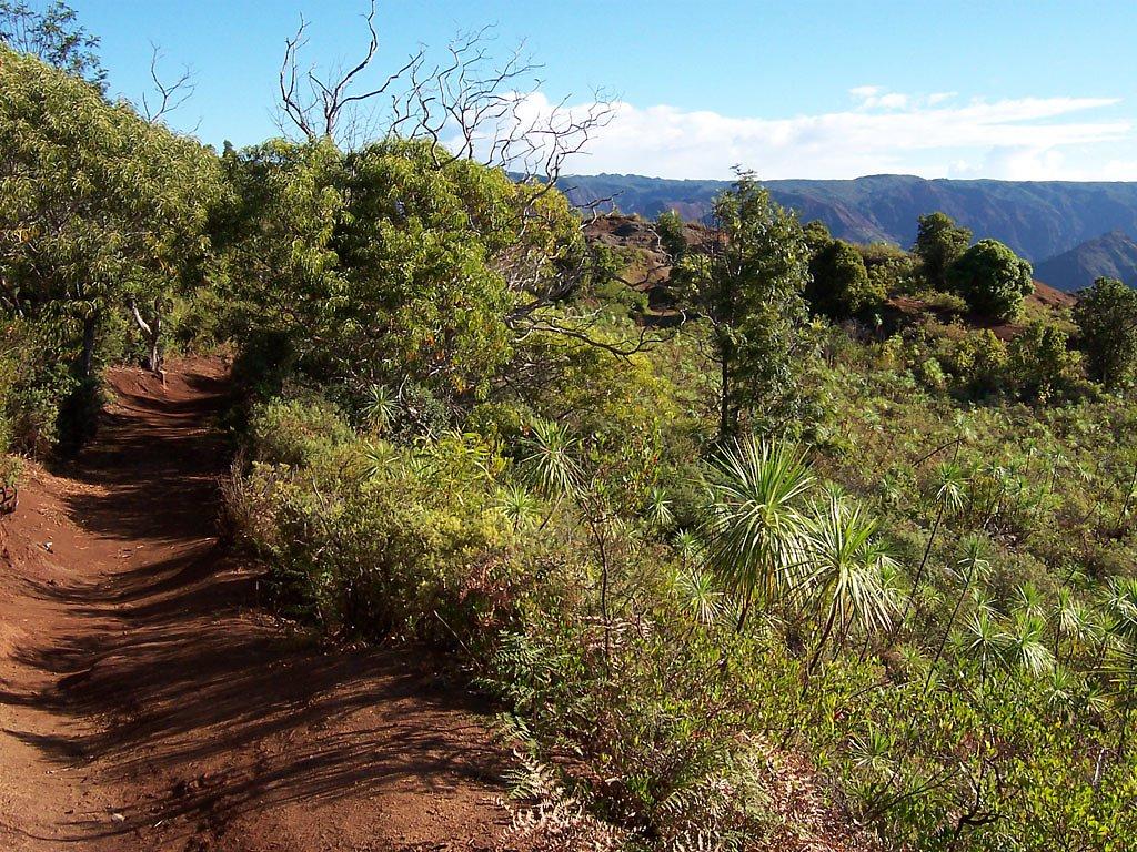 2003 - Kauai